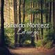 Rinaldo Montezz Let Me Go