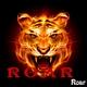 Roar Roar - Single