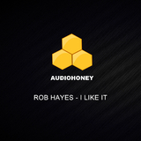 I Like It by Rob Hayes mp3 download