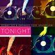 Ronny Dee & Grondzo feat. Spaceflyer Tonight