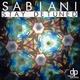 Sabiani Stay Detuned