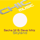 Sacha M & Dave Mitz Skyland
