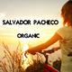 Salvador Pacheco Organic