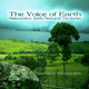 Sandro Brauneis The Voice of Earth