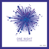 One Night by Schwarz & Funk mp3 download