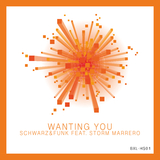 Wanting You by Schwarz & Funk feat. Storm Marrero mp3 download