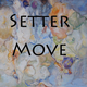 Setter - Move