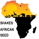 Shakes African Seed