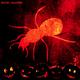 Skauch Halloween(Minimal Mix)