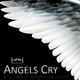 Skillshuut - Angels Cry(Extended 432hz)