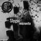 Slygui - Micronite