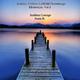 Sonis Rai Ambient Chillout Leftfield Downtempo Electronica Vol 2