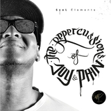 The Repercussions of Joy & Pain by Soul Elements mp3 download
