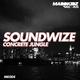 Soundwize Concrete Jungle