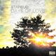 Starbud Days of Love