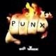 Steinregen Punx Not Junx