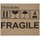 Steve Bionic Fragile