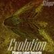 Stiopa Evolution