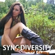 Sync Diversity feat. Danny Claire Nothing Can Stop Me
