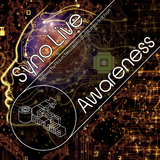 Awareness by Syno Live mp3 download