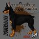 Taigherwuds Feat. Dario H Dobermann