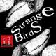 Taureau Strange Birds