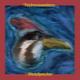 Technoseeders - Woodpecker