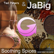 Ted Peters & JaBig Soothing Spices(Extended Versions)