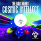 The Bad Rabbit Cosmic Intellect