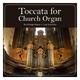 The Rüdiger Bayer Virtual Orchestra Toccata for Church Organ