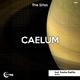 The Sirius Caelum