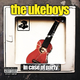 The Ukeboys In Case of Party
