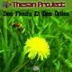 Thesan Project Des Fleurs et des orties