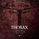 Thorax Innocent Blood