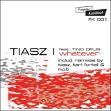 Whatever by Tiasz mp3 download