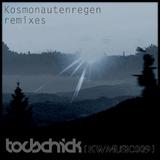 Kosmonautenregen Remixes by Todschick mp3 download
