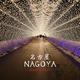 Tom Topazz Nagoya(Tunnel of Lights Edit)