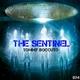 Tommy Boccuto The Sentinel