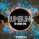 Tosch Rumbling(Den Shender Remix)