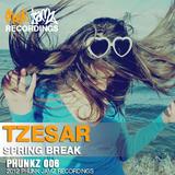 Spring Break by Tzesar mp3 downloads