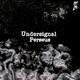 Undersignal - Perseus