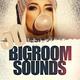 Various Artists - 50 Bigroom Sounds