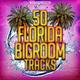 Various Artists - 50 Florida Bigroom Tracks