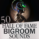 Various Artists - 50 Hall of Fame Bigroom Sounds