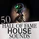 Various Artists - 50 Hall of Fame House Sounds