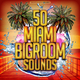 Various Artists - 50 Miami Bigroom Sounds