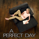 Various Artists A Perfect Day