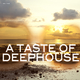 Various Artists - A Taste of Deephouse