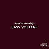 Bass Voltage by Various Artists mp3 download