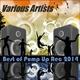 Various Artists - Best of Pump Up Rec 2014